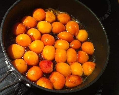 Apricot Caramelize